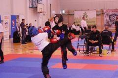 Grand Prix Pointfighting - Świdnik 28.10.2017