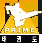 Szkoła Walki Prime Logo